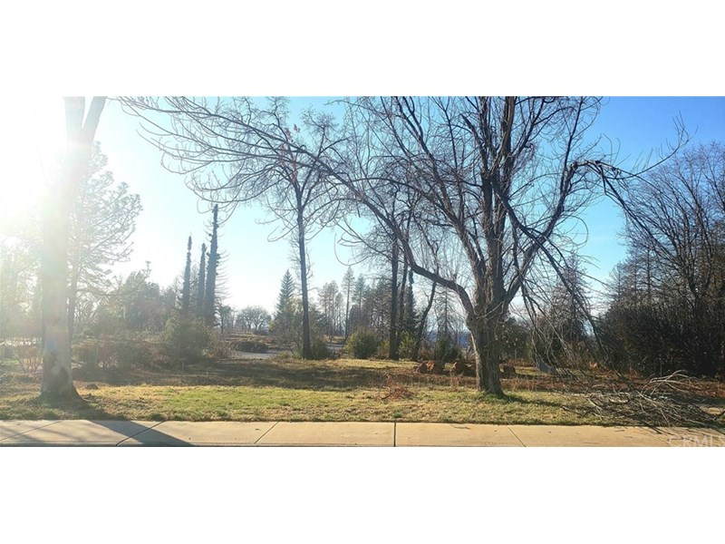 Front Shot of the property. Nice looking lot with lots of open space where a 1552 Sqft house sat. Septic is still on property. Some healthy trees, green lawn in back yard area and located very close to Chico. Let's build your dream home!!