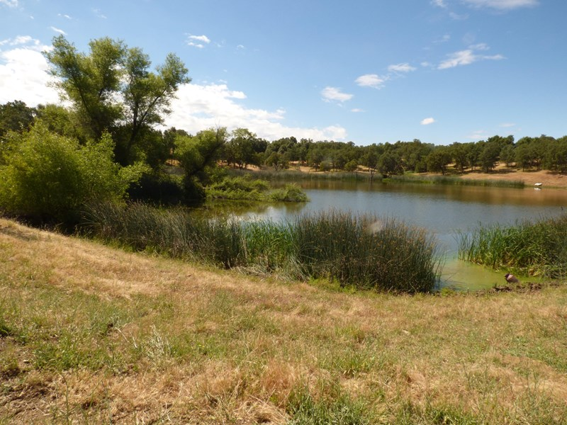 Large Reservoir by house