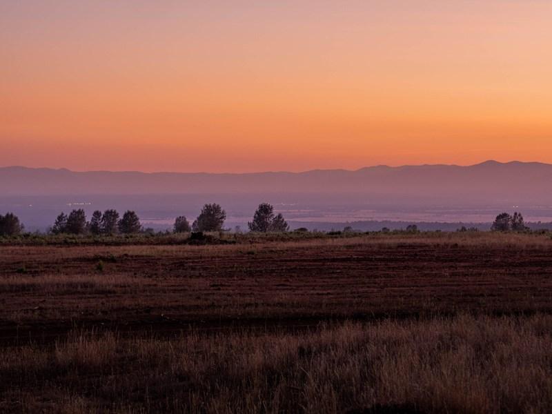 Shingletown Ranch (21 of 24)