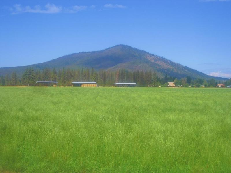 Soldier Mt. Hay Ranch